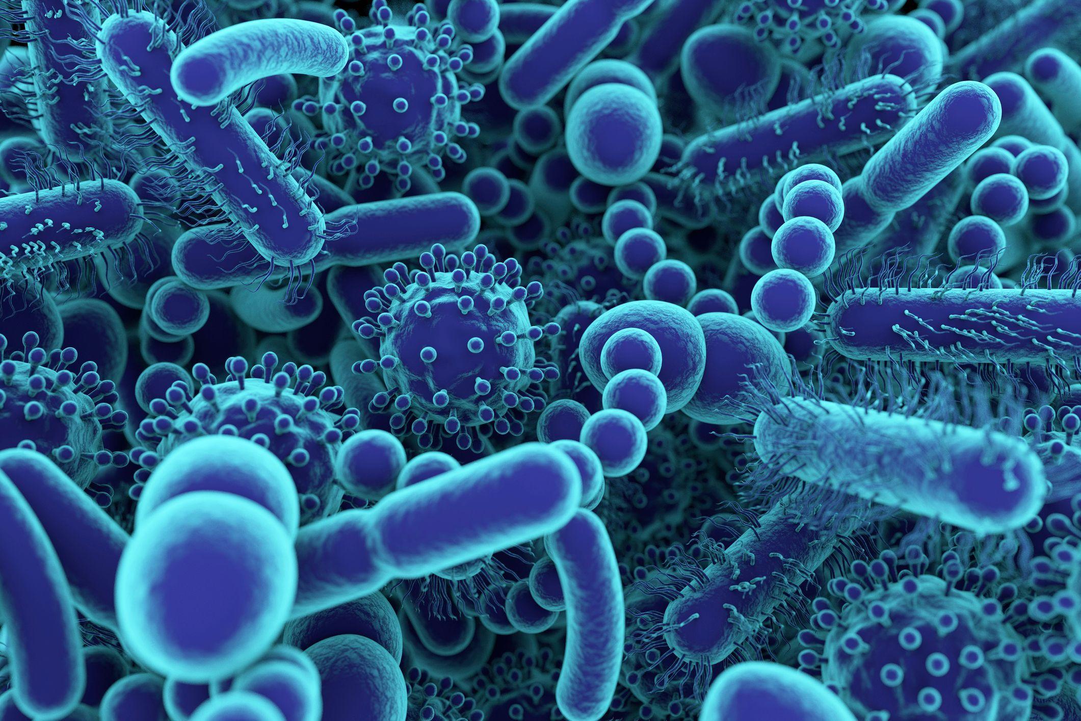Antibiotiques Overdose GeekAnimea